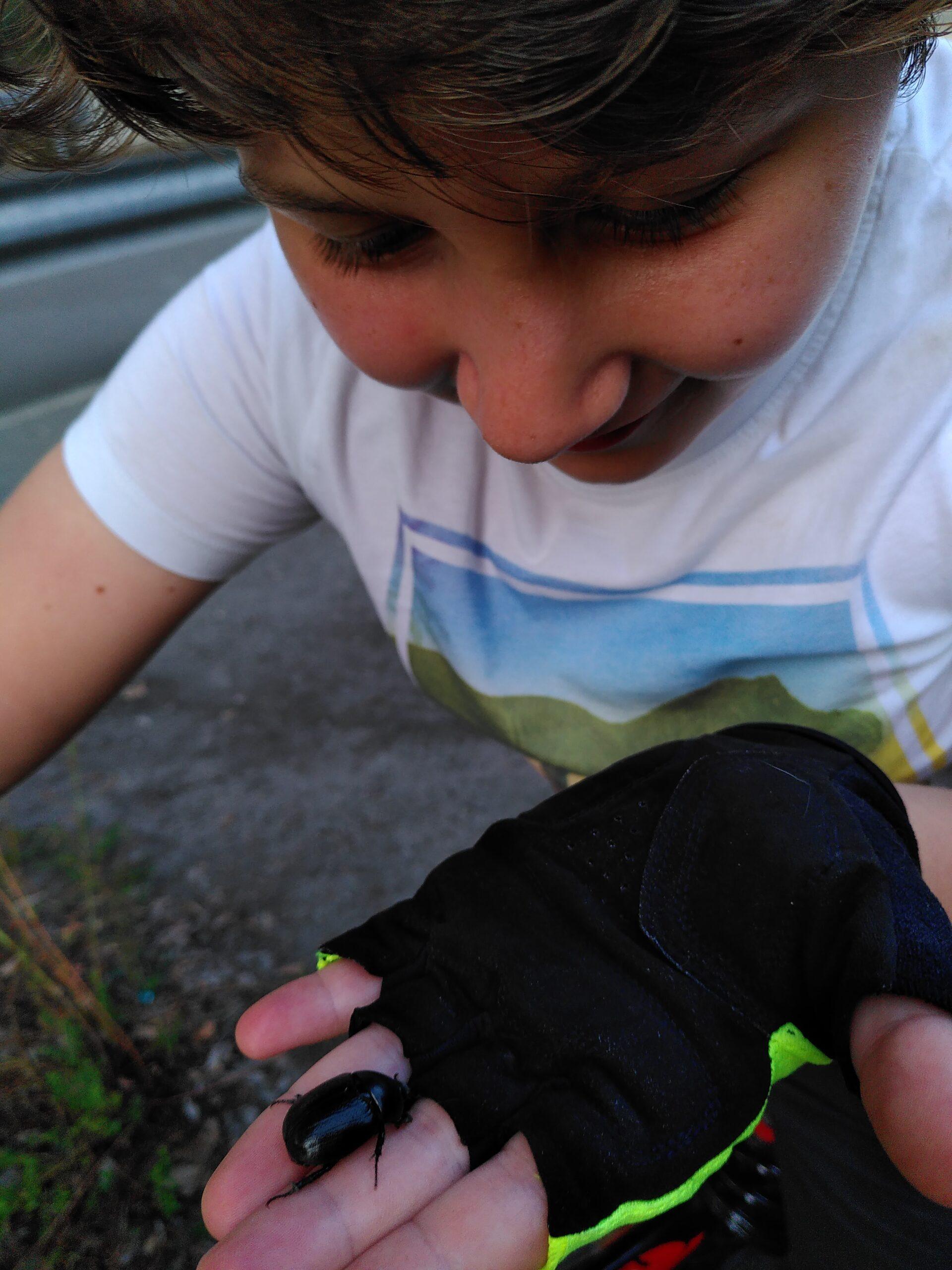Un bambino che osserva uno scarabeo posato sulla sua mano
